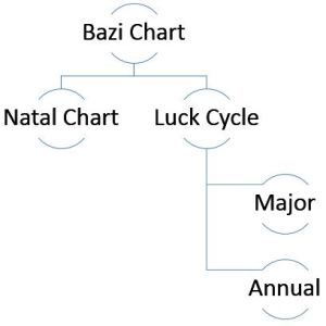 BaziConsult Luckcycle