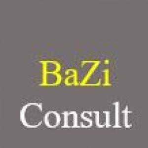 Bazi Consult